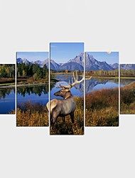 Stretched Canvas Print Landscape Animal ClassicFive Panels Canvas Any Shape Print Wall Decor For Home Decoration
