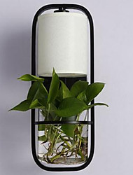 Modern Iron Creative Potted Plant Glass Wall Lamp
