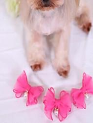 Gatti Cani Accessori per acconciature Abbigliamento per cani Inverno Estate Primavera/Autunno Con perlineDivertente Di tendenza Casual