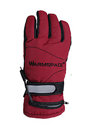 Unisex Full-finger Gloves Keep Warm Waterproof Wearable Anti-skidding Snowproof Reduces Chafing Lightweight Activity/ Sports Gloves