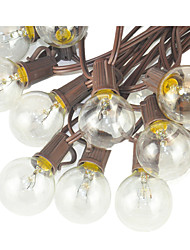 GMY® G40 25 Bulbs 110-130V 125W 25ft Patio String Light Brown Wire Outdoor Decorative Christmas UL 1PCS