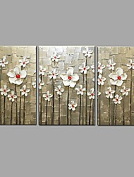 Pittura a olio dipinta a mano dipinta a mano moderno 3 pezzi / art art murali con telaio allungato pronto a appendere