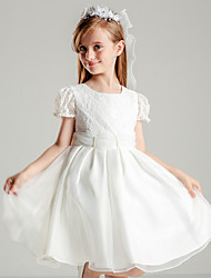 cheap -Princess Knee Length Flower Girl Dress - Polyester Lace Short Sleeves Jewel Neck with Beading Lace by Liyuan