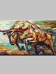 cheap -Hand-Painted Animals Horizontal, Modern European Style Canvas Oil Painting Home Decoration One Panel