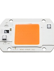 economico -1pc COB Accessorio lampadina Chip LED per faretto LED Flood Light fai da te 20 W