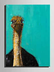 Mini Size E-HOME Oil painting Modern Lovely Ostrich Pure Hand Draw Frameless Decorative Painting