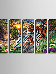 cheap -E-HOME Stretched Canvas Art The Tiger Family In The Forest Decoration Painting Set Of 5