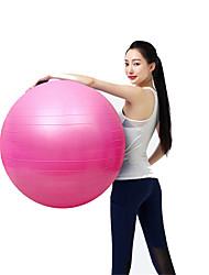 "cheap -25 1/2"" (65 cm) Exercise Ball Fitness Ball/Yoga Ball Explosion-Proof Yoga Training Balance PVC"
