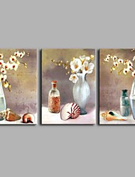 Bottle Elegent Flowers 3-Piece 100% Hand Painted Contemporary Oil Paintings Modern Artwork Wall Art for Room Decoration 20x28inchx3