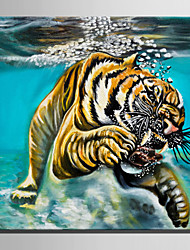 Mini Size E-HOME Oil painting Modern Tiger In The Water Pure Hand Draw Frameless Decorative Painting