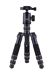 cheap -Andoer TP166C Lightweight Carbon Fiber Table Mini Tripod with Ball Head Kit 3-Section Adjustable Height Fold