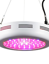 cheap -5000 lm Growing Light Fixtures 72 leds High Power LED Warm White Red Purple UV (Blacklight) AC 85-265V