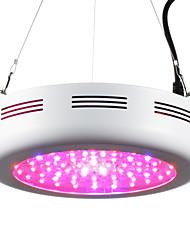 LED Grow Lights 72 High Power LED 3220-3680 lm Warm White Purple UV (Blacklight) Red K AC 85-265 V