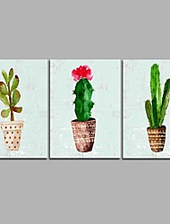 abordables -Pintada a mano Floral/Botánico Artístico Inspirado en la Naturaleza Rústico Casual Moderno/Contemporáneo Oficina/ Negocios Cool Navidad