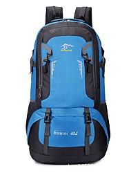 economico -60 L Zainetti Escursionismo Campeggio Sci di fondo Indossabile Resistente agli urti Viaggi Alpinismo Sci fuoripista Sci di fondo Nylon