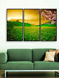 abordables -Paysage A fleurs/Botanique Illustration Art mural,PVC Matériel Avec Cadre For Décoration d'intérieur Cadre Art Salle de séjour Chambre à