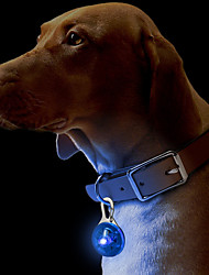 cheap -Cat Dog Collar Tag LED Lights Safety Solid Plastic Yellow Red Green Blue Pink