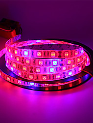 abordables -5m usb led grow lights 5red& 1blue creciente smd5050 ip65 led tira planta crecimiento luz 5 v
