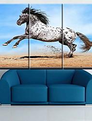 Недорогие -Классика,3 панели Холст С картинкой Декор стены Украшение дома