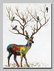 cheap -Oil Painting Hand Painted - Animals Animals Modern Canvas