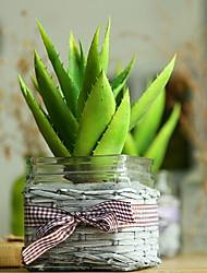 economico -1 Ramo Plastica Piante succulente Fiori da tavolo Fiori Artificiali