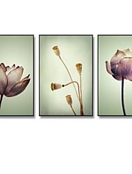 economico -Botanica Illustrazioni Decorazioni da parete,Plastica Materiale con cornice For Decorazioni per la casa Cornice Salotto