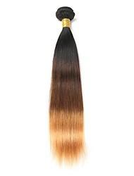 Недорогие -1 комплект Бразильские волосы Прямой Натуральные волосы Омбре Ткет человеческих волос Расширения человеческих волос / Прямой силуэт