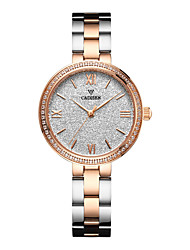 cheap -CADISEN Women's Quartz Pave Watch Wrist Watch Japanese Water Resistant / Water Proof Casual Watch Stainless Steel Band Casual Elegant
