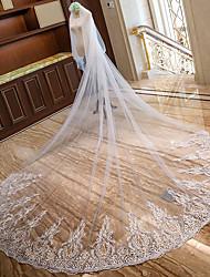 Недорогие -Два слоя Кружевная кромка Свадьба Свадебные вуали Соборная фата Фата для венчания С Лепестки Вышивка бисером в виде цветов Планка Кружева