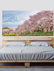 economico -Adesivo Adesivi decorativi da parete - Adesivi 3D da parete Paesaggi Floreale / Botanical Riposizionabile Rimovibile