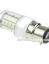 cheap -SENCART 3000-3500/6000-6500lm B22 LED Corn Lights T 40 LED Beads SMD 5630 Decorative Warm White / Cold White 220-240V / RoHS