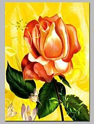 Недорогие -Hang-роспись маслом Ручная роспись - Натюрморт Цветочные мотивы / ботанический Традиционный холст