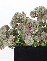お買い得  -人工花 1 田園 スタイル 多肉植物 / 植物 テーブルトップフラワー