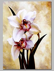 Недорогие -Hang-роспись маслом Ручная роспись - Цветочные мотивы / ботанический Классика холст