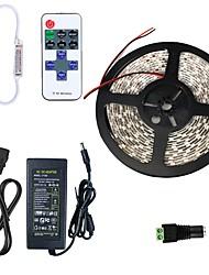 Недорогие -5 метров Гибкие светодиодные ленты 300 светодиоды SMD5630 1 пульт дистанционного управления Keys / 1 адаптер питания X 5A Тёплый белый / Холодный белый Можно резать / Компонуемый / Самоклеющиеся
