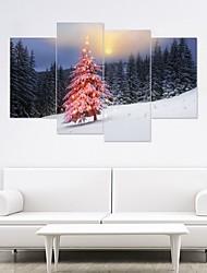 economico -Adesivi decorativi da parete - Adesivi 3D da parete / Holiday Wall Stickers Natale / Floreale / Botanical Camera da letto / Camera dei bambini