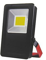 abordables -BRELONG® 1pc 30 W Projecteurs LED Imperméable / Design nouveau Blanc 12 V Eclairage Extérieur / Cour / Jardin 1 Perles LED