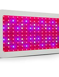 Недорогие -300W 13200lm Растущие светильники 150 Светодиодные бусины Высокомощный LED Тёплый белый Белый Синий Красный 85-265V