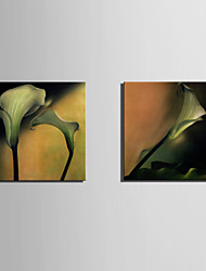 Недорогие -С картинкой Роликовые холсты / Отпечатки на холсте - ботанический / Цветочные мотивы / ботанический Modern