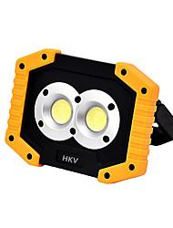 abordables -HKV 1pc 10 W Projecteurs LED Design nouveau Blanc Froid 5 V Eclairage Extérieur 2 Perles LED