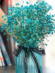 levne -Umělé květiny 1 Větev Klasické minimalistický styl Věčné květy Květina na stůl