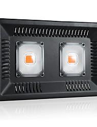 Недорогие -1 комплект 100 W 5000 lm 1 Светодиодные бусины Полного спектра Простая установка Для парниковых гидропоники Растущие светильники Фиолетовый 220-240 V 110-120 V Деловой