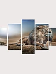 رخيصةأون -الطباعة يطبع قماش يلف مطبوعات قماش رغم الضغوط - حيوانات موضوع الكلاسيكية معاصر الحديث خمس لوحات