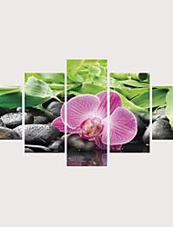 abordables -Imprimé Impressions sur toile roulées Impression sur Toile - Botanique A fleurs / Botanique Contemporain Moderne Cinq Panneaux