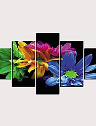 halpa -Painettu Valssatut kangasjulisteet - Abstrakti Kasvitiede Klassinen Moderni 5 paneeli