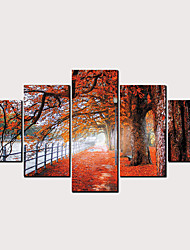 cheap -Print Rolled Canvas Prints - Landscape Floral / Botanical Classic Modern Five Panels