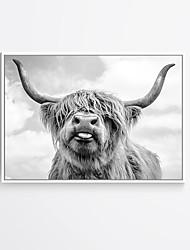 abordables -Estampado Laminados en lienzo - Animales Modern