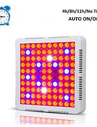 Недорогие -1 комплект 60 W 4800 lm 100 Светодиодные бусины Растущие светильники 85-265 V Дом / офис Овощеводство