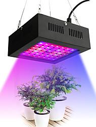 ieftine -1 buc 80 W 2195-2535 lm 42 LED-uri de margele Lumina crescândă Roșu 85-265 V