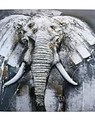 levne -Novinka Wall Decor Slitina Zvířata Wall Art, Drapérii Dekorace